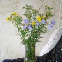 Колокольчики мои, цветики степные... :: Светлана Калмыкова