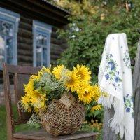 Корзина подсолнухов у деревенского дома :: Ольга Касьянова