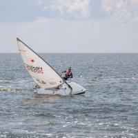 День рыбака в Таганроге 14 июля. :: Андрей Lyz