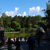 Лебединое озеро... :: Андрей Кобриков