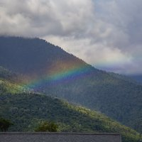 Разноцветное настроение природы :: Светлана Карнаух