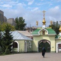 Тамбов. Вознесенский монастырь. :: Олег Манаенков