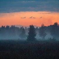 Туман и закат :: Виктория Невская