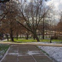 Сквер у памятника Пограничникам Отечества :: Игорь Белоногов