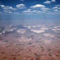 Солёное озеро :: Ольга Мальцева