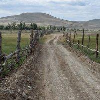 Дорога и частная территория :: Валерий Михмель