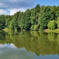 Верхний Царицынский пруд ( фото с телефона) :: Константин Анисимов