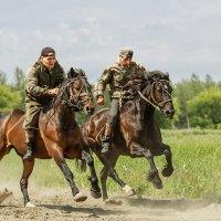 Скачки без сёдел на рабочих лошадях :: Nn semonov_nn