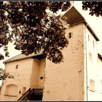 Эстония. Замок Пуртсе (XVI век). :: Ольга Кирсанова