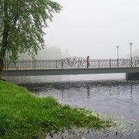 Река Чибью в ухтинском парке уже выходит из берегов из-за ливней. :: Николай Зиновьев