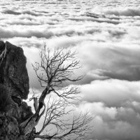Одиночество над облаками... :: Анастасия Богатова