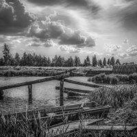 У старой деревенской плотины ........ :: Александр Селезнев