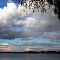 Пробиваясь сквозь облака :: Galina Solovova