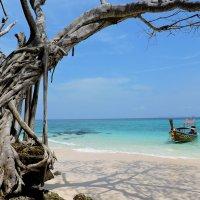 Тайланд, Бамбуковй остров :: OlesiaVS .