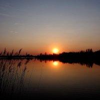 Утомлённое солнце... :: Антонина Гугаева