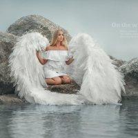 Wings :: Olga Burmistrova