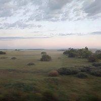 Туманная дымка раннего утра ... :: Татьяна Котельникова
