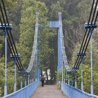 Шушенское   старый  мост :: Виктор