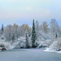 Начало зимы :: Анатолий Володин
