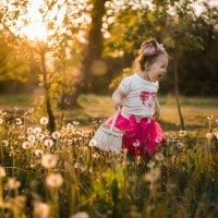 Детские эмоции :: Оля Шейко