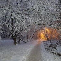 Зимняя сказка. :: Евгений