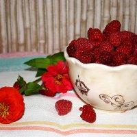 Ягода малина :: Ольга Мутовина