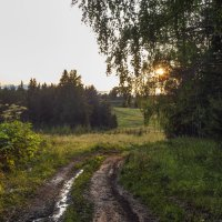 По сырым дорогам навстречу закату :: Алексей Сметкин