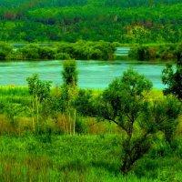 Паводок на речке Пёре :: Милла Корн