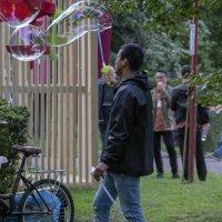 Пузыри! :: Яков Реймер