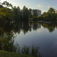 В парке :: Анжела Пасечник