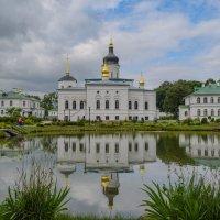 Спассо-Елезарьевский монастырь. :: Владимир Филимонов