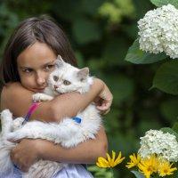 Мой милый котик :: Дмитрий Перских