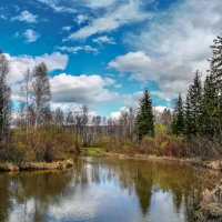 Весна на речке :: Анатолий Володин