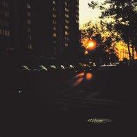 Солнце - гребаный фонарь :: Ксения OKDMUSE