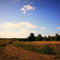 Август :: Serdechko (Лариса) Кальнина
