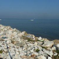 утро у моря :: веселов михаил