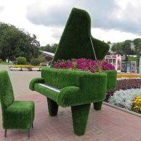Цветочный рояль :: Вера Щукина