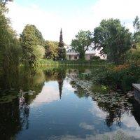 Тарту. Ботанический сад Тартуского университета :: Julia Nikolina
