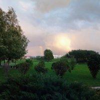 После дождя :: Julia Nikolina