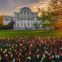 Елагин дворец :: Владимир Колесников