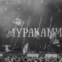 Чернозем 2019 :: Павел C