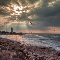 У моря. :: Анна Пугач