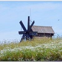 Старая мельница :: Нина Синица