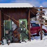 зима :: Ноэми Гольдберг