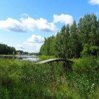 Мостик на островок ( из поездок по области) :: Милешкин Владимир Алексеевич