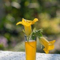 Мёд и цветы тыквы, отличного медоноса. :: Елена Ахромеева