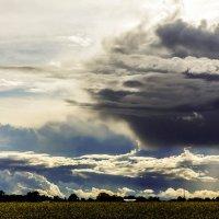 С облаками :: Александр
