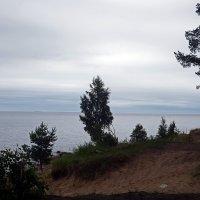 Берег Ладожского озера :: Ольга И