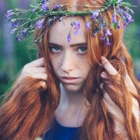 Лолита :: Mikhail Dmitriev