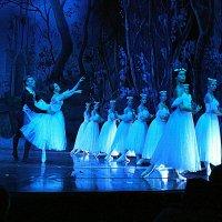 "Танец виллис. Балет ""Жизель"" :: ИРЭН@ ."